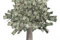 Neki investitori svesno ulažu u Ponzi prevaru