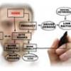 Kako kreirati informacionu arhitekturu web sajta?