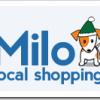 eBay kupio lokalni shopping sajt Milo.com