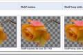 Google WebP sve veća konkurencija JPEG ali i PNG formatu